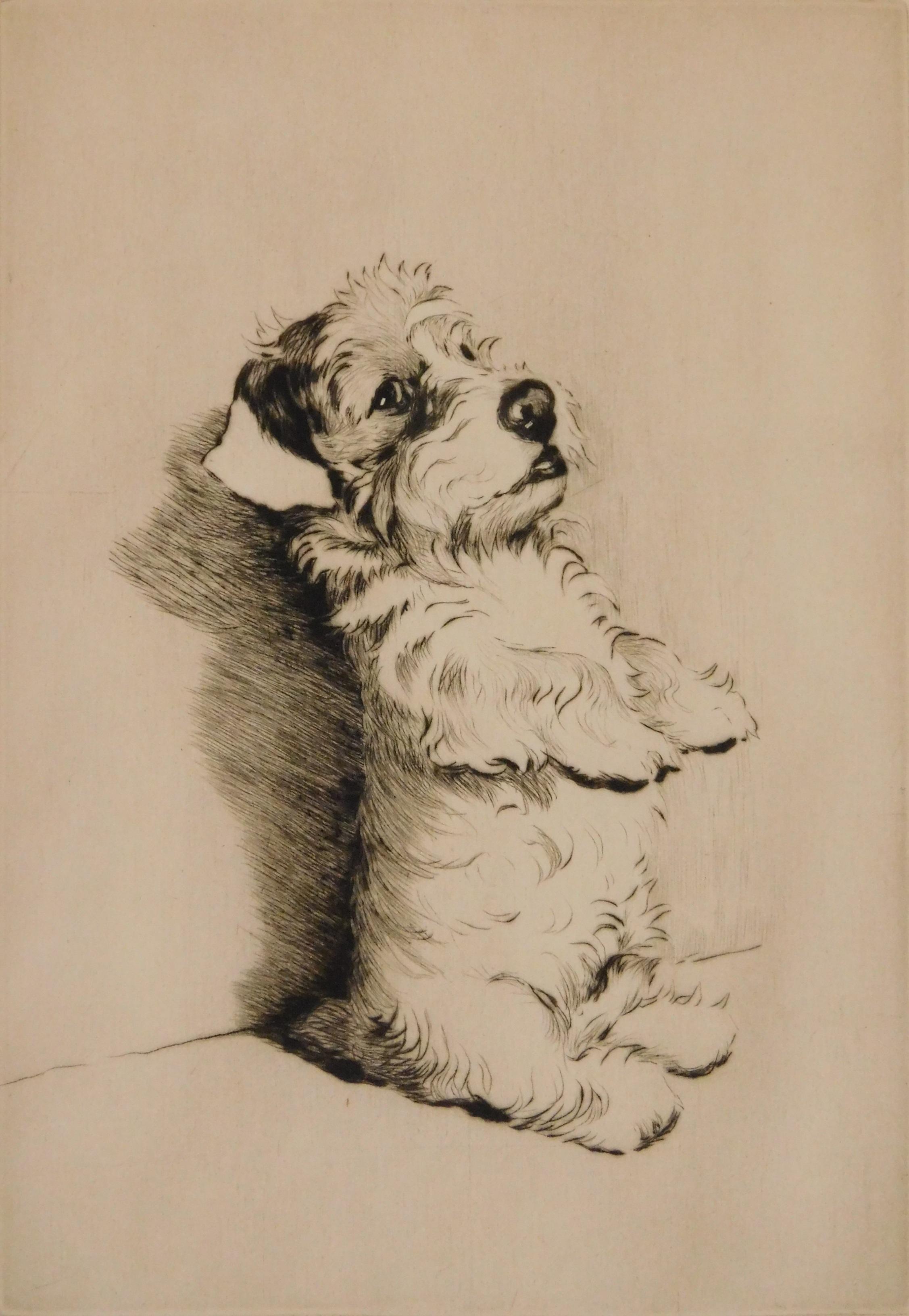 Prints, Drawings, Fine & Decorative Arts - Sale 219