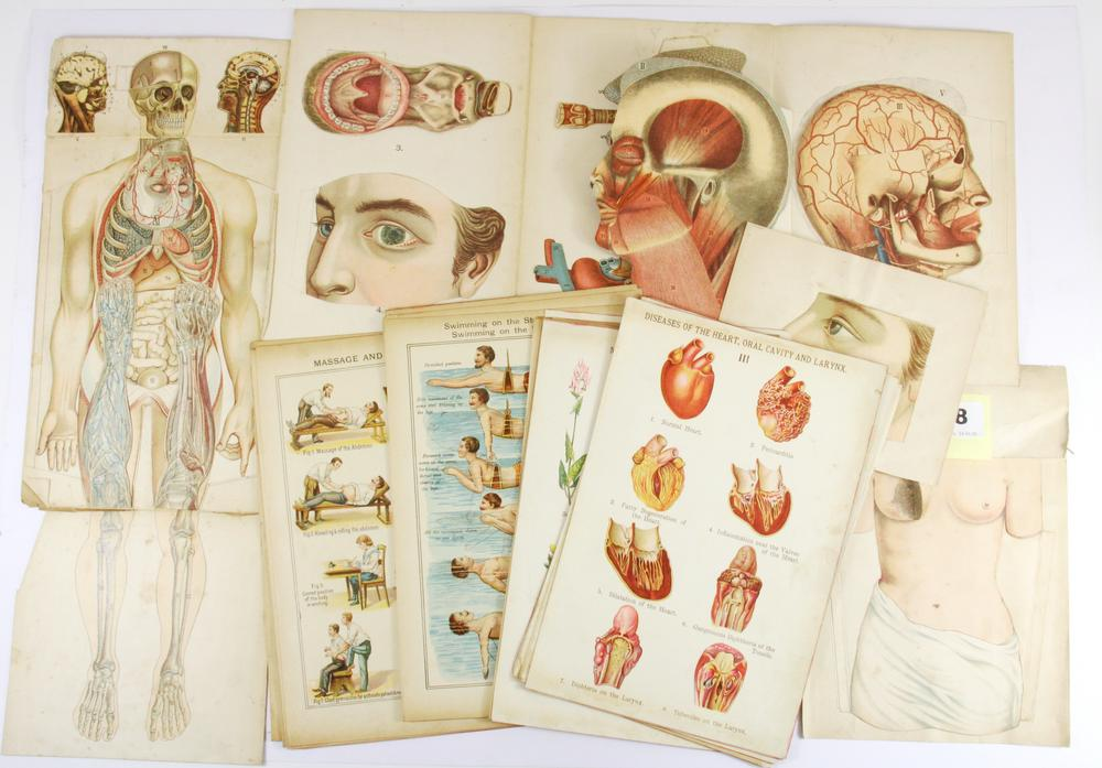 2a8ec8e097 A collection of early medical fold out educational items and other ear –  Lofty Marketplace